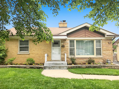 Roselle Single Family Home For Sale: 46 West Granville Avenue