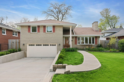 Elmhurst Single Family Home For Sale: 104 South Linden Avenue