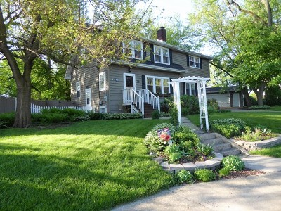 Glen Ellyn Single Family Home For Sale: 397 Lorraine Street