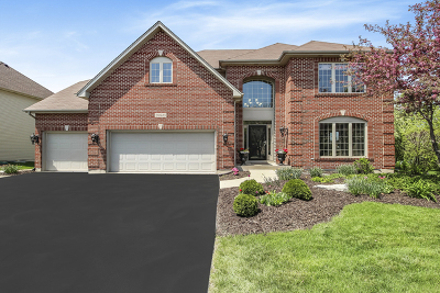 Plainfield Single Family Home For Sale: 26640 Lindengate Circle
