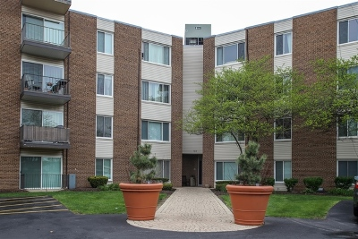 Palatine IL Condo/Townhouse For Sale: $129,500