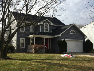 Naperville Single Family Home For Sale: 935 Churchill Drive