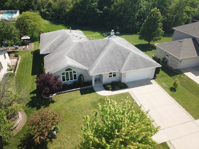 Lockport Single Family Home For Sale: 1253 Tralee Lane