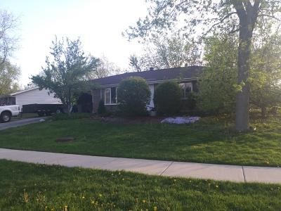 Schaumburg Single Family Home Contingent: 210 Andrew Lane