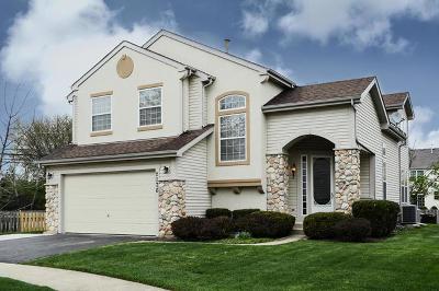 Buffalo Grove Single Family Home For Sale: 2176 North Avalon Court