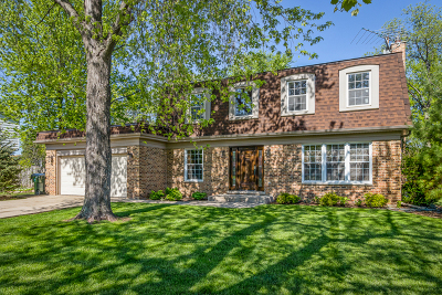 Arlington Heights Single Family Home For Sale: 2325 South Cedar Glen Drive