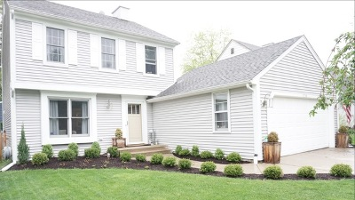 Naperville Single Family Home For Sale: 1768 Brookdale Road