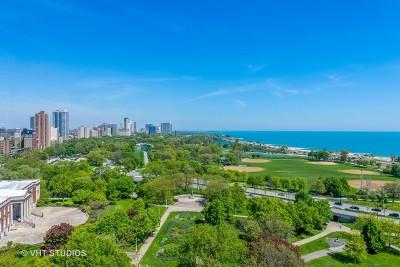 Chicago IL Condo/Townhouse New: $305,000