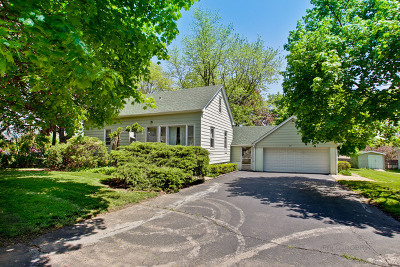 Schaumburg Single Family Home For Sale: 35 Lengl Drive