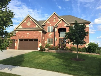 Naperville Single Family Home For Sale: 3723 Timber Creek Lane