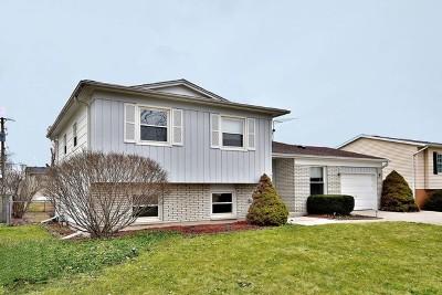 Buffalo Grove Single Family Home For Sale: 754 Golfview Terrace