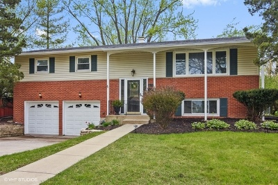 Palatine Single Family Home For Sale: 612 North Whitcomb Drive