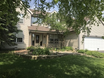 Lake Zurich Single Family Home For Sale: 720 Foxmoor Lane