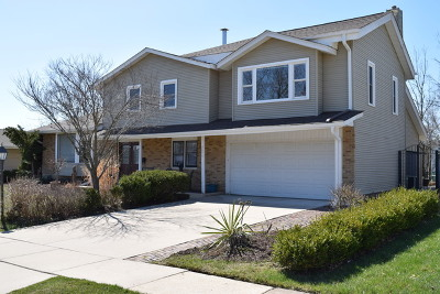 Hoffman Estates Single Family Home For Sale: 3674 Winston Place