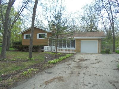 Crystal Lake Single Family Home New: 4513 David Lane