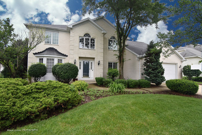 Naperville Single Family Home For Sale: 4656 Mather Court