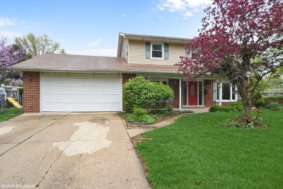 Palatine Single Family Home For Sale: 750 East Baldwin Road
