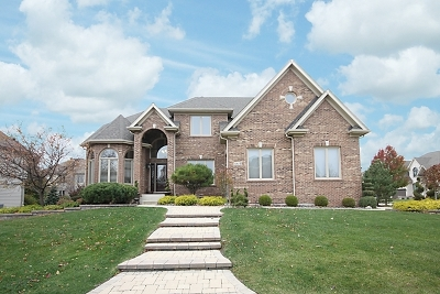 Plainfield Single Family Home For Sale: 11613 Century Circle
