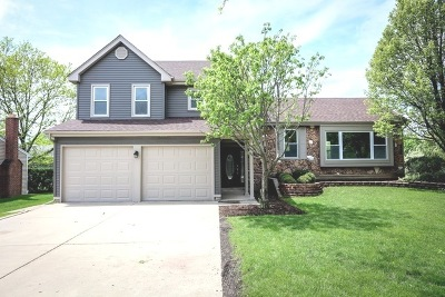 Schaumburg Single Family Home For Sale: 328 Summit Drive