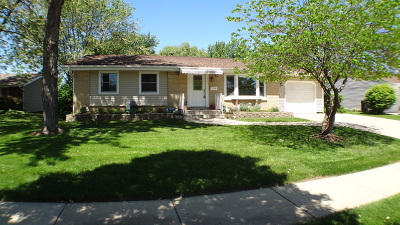 Schaumburg Single Family Home Contingent: 1004 South Cedarcrest Drive South