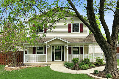 Palatine Single Family Home For Sale: 858 West Hillside Street