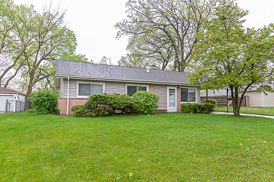 Hoffman Estates Single Family Home For Sale: 55 Payson Street