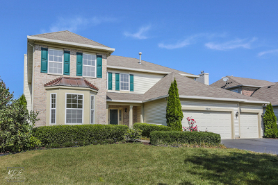 Naperville Single Family Home New: 3532 Timber Creek Lane