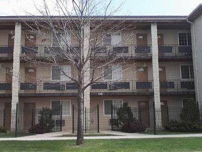 Forest Park Condo/Townhouse For Sale: 1140 Ferdinand Avenue #8