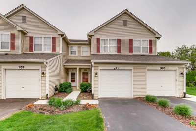 Naperville Condo/Townhouse New: 961 Genesee Court #961