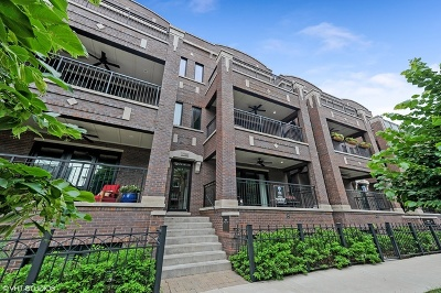 Chicago Condo/Townhouse New: 3946 North Hoyne Avenue #1N