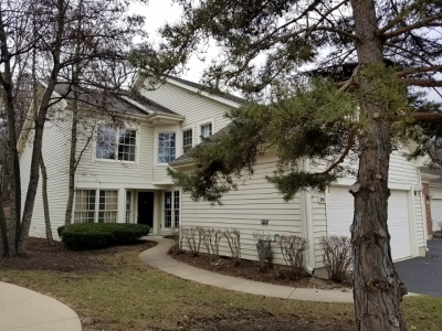 Schaumburg Condo/Townhouse For Sale: 310 Spring Creek Circle