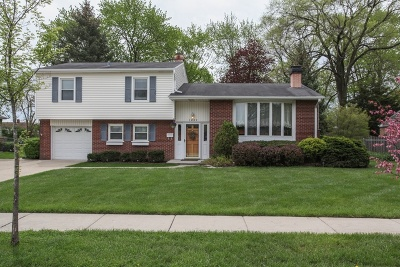 Palatine Single Family Home For Sale: 1439 East Norman Drive