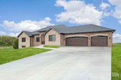 Monee Single Family Home For Sale: 3513 West Pinewood Drive