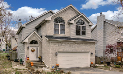 Lake Zurich Single Family Home For Sale: 23622 North Field Road