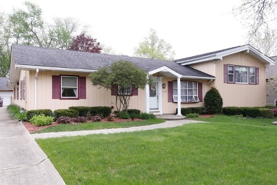 Hinsdale Single Family Home For Sale: 5809 South Thurlow Street