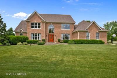 Naperville Single Family Home For Sale: 24516 Royal Portrush Drive