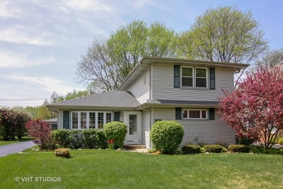 Palatine Single Family Home For Sale: 114 South Cedar Street