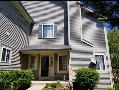 South Elgin Condo/Townhouse For Sale: 3 Windsor Circle #B