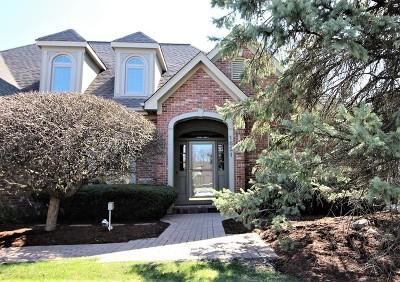 Geneva Single Family Home New: 1521 Eaglebrook Drive