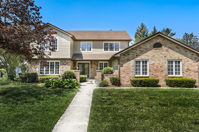 Hinsdale Single Family Home For Sale: 721 East 3rd Street