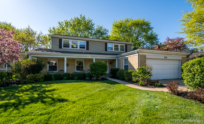 Arlington Heights Single Family Home Contingent: 1726 South Surrey Ridge Drive