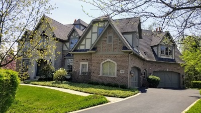 Glen Ellyn Single Family Home For Sale: 925 Jenna Court