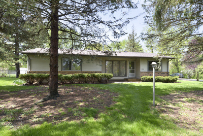 Lake Zurich Single Family Home For Sale: 23626 North Overhill Drive