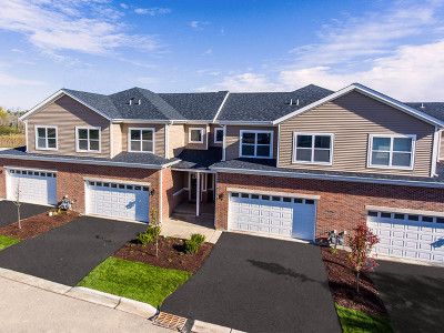 Palatine Condo/Townhouse For Sale: 2384 North Dee Lane
