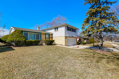 Elmhurst Single Family Home For Sale: 832 South Cedar Avenue