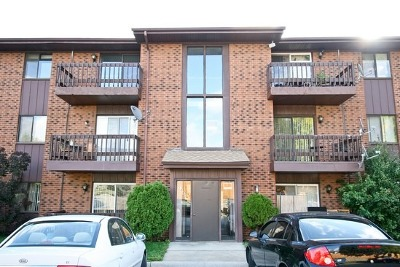 Oak Forest, Orland Hills, Orland Park, Palos Heights, Palos Hills, Palos Park, Tinley Park Rental For Rent: 6408 Nature Drive #1W