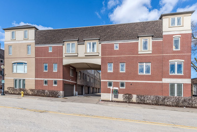 Downers Grove Condo/Townhouse New: 922 Warren Avenue #101