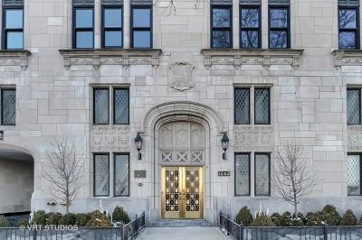 Chicago IL Condo/Townhouse New: $1,595,000