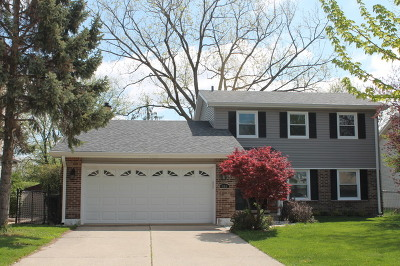 Schaumburg Single Family Home For Sale: 889 Asbury Lane