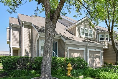 Carol Stream Condo/Townhouse Re-Activated: 387 Kerry Court